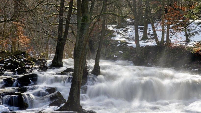 """""""Turbofrühling"""" lässt Waldbrandgefahr im Harz steigen"""